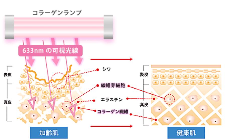 コラーゲンマシン seecretの仕組み